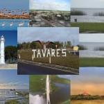 Venha conhecer Tavares!